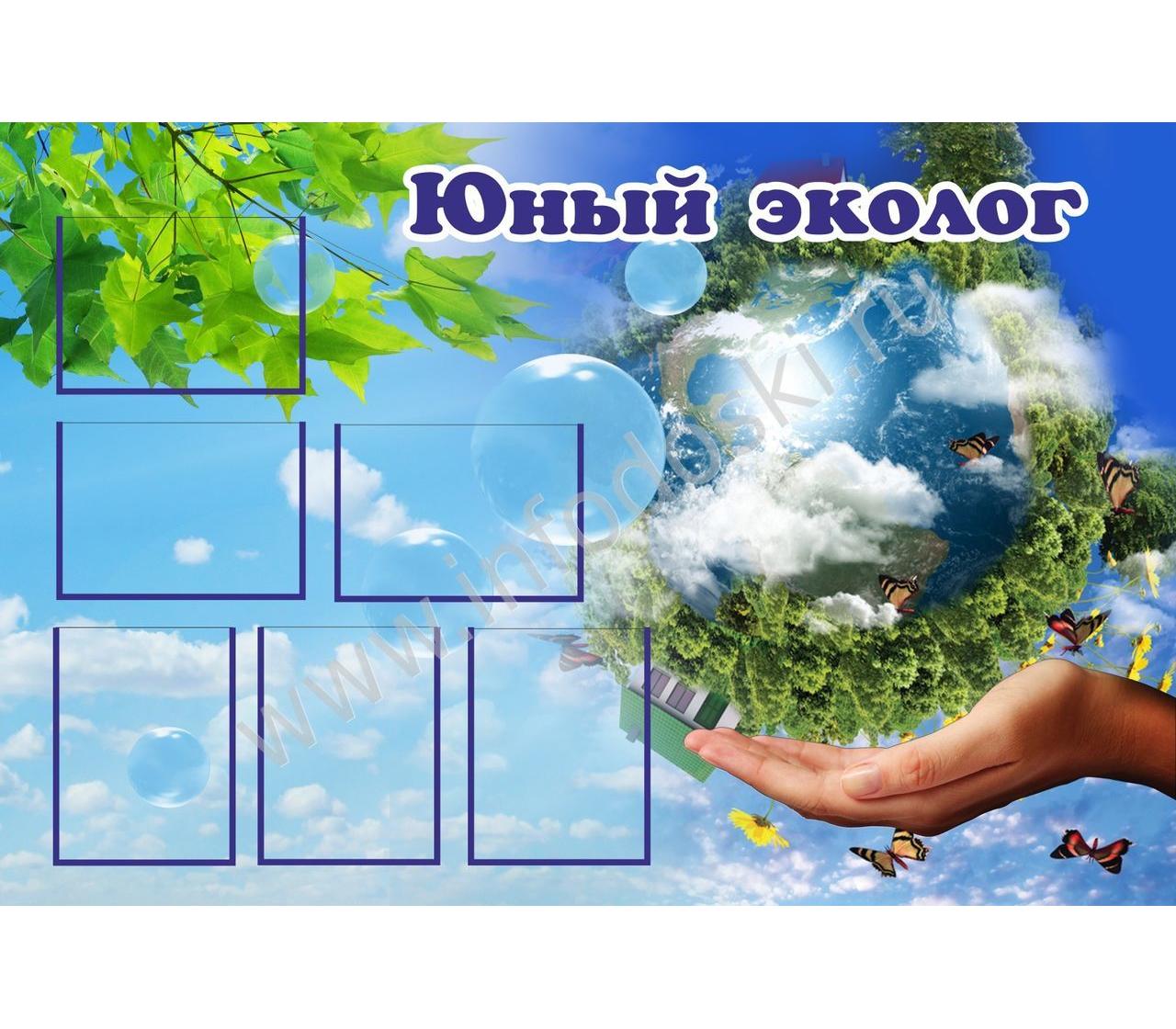 приводим картинки для стенда по экологии в школе постулат имеет