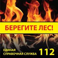 Стенд БЕРЕГИТЕ ЛЕС! ВП-01 (146), 1000*1000мм, фото 1