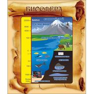 Стенд для кабинета географии БИОСФЕРА (свиток), 0,415*0,5м, фото 1