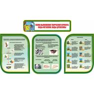 Комплект стендов в кабинет Технологии в зеленом цвете СХЕМА ВЫПОЛНЕНИЯ ТВОРЧЕСКОГО ПРОЕКТА. ВИДЫ МЕТАЛЛОВ. ВИДЫ ДРЕВЕСИНЫ, 2,37*1,35м, фото 1