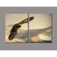 """Двухмодульная картина """"Высокий полет"""", фото 1"""