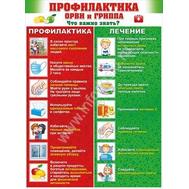 Плакат А2 ПРОФИЛАКТИКА ОРВИ И ГРИППА, 64.630, фото 1