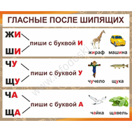 Стенд для школы ГЛАСНЫЕ ПОСЛЕ ШИПЯЩИХ, фото 1