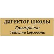 Табличка для школьного кабинета ДИРЕКТОР ШКОЛЫ в золотом цвете, фото 1