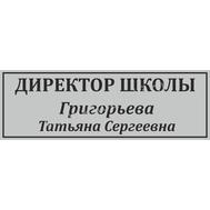 Табличка для школьного кабинета ДИРЕКТОР ШКОЛЫ серебро, фото 1