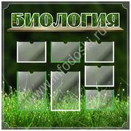 Стенд для каб.биологии БИОЛОГИЯ (трава), 1*1м, фото 1