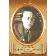 Стенд-портрет аншет для кабинета биологии СЕВЕРЦОВ, фото 1