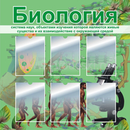 Стенд для каб.биологии БИОЛОГИЯ (эволюция), 1*1м, фото 1