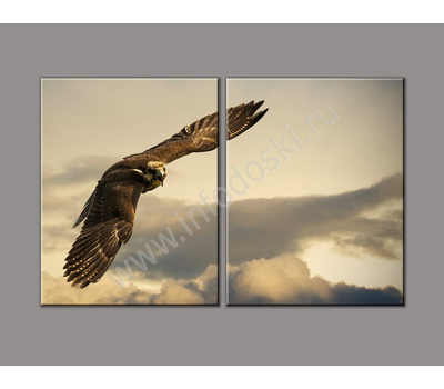 """Двухмодульная картина """"Высокий полет"""", фото 3"""