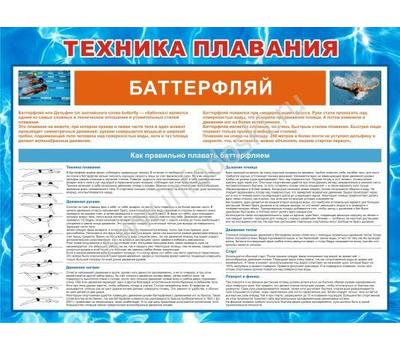Стенд ТЕХНИКА ПЛАВАНИЯ БАТТЕРФЛЯЙ ВП-01 (64), 1200*1000мм, фото 1