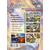 Комплект плакатов А3 ВРЕМЯ. ВРЕМЕННЫЕ ЯВЛЕНИЯ 4шт. КПЛ-20 /ФГОС/, фото 1